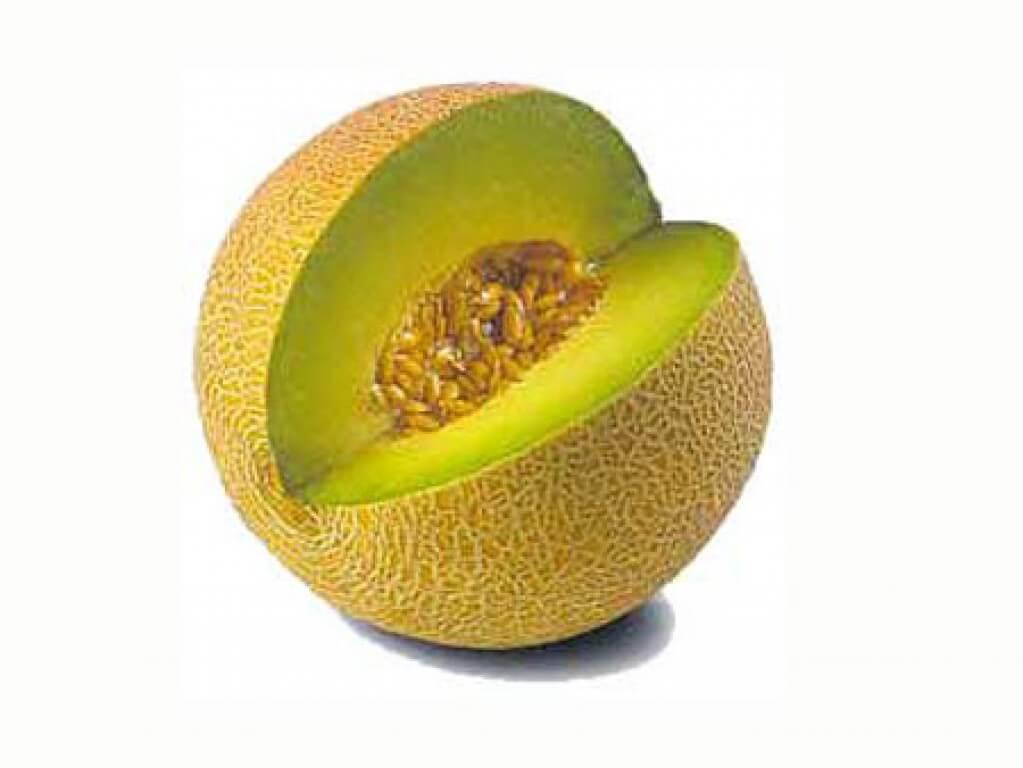 melon-3