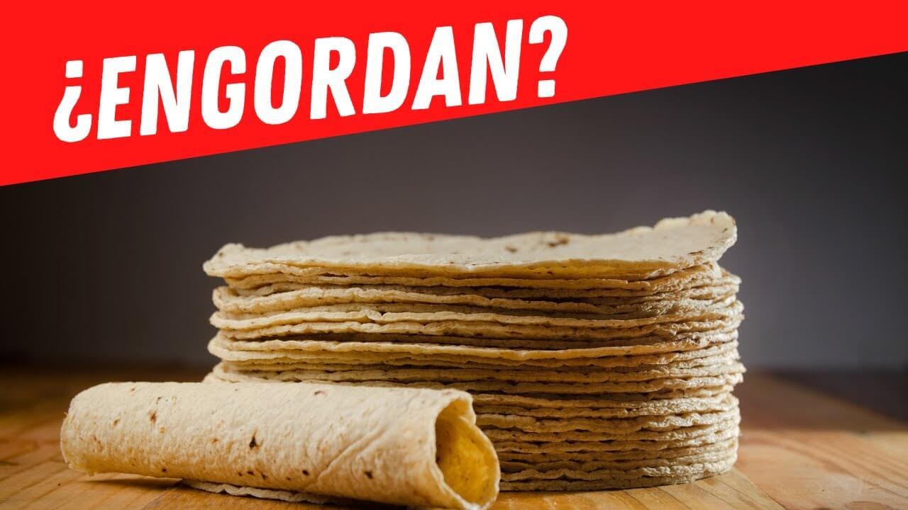 ¿Qué engorda más, la harina de trigo o la harina de maíz?